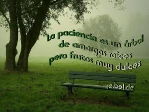 paciencia2