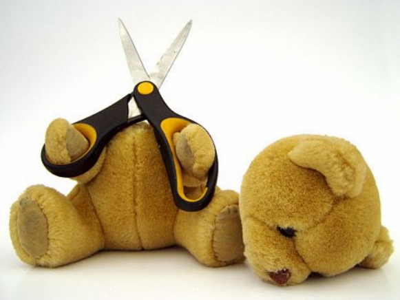 oso-cabeza-cortada-fracaso